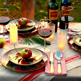 Jazz Red Striped Napkins and Provence Red Striped Tablecloth